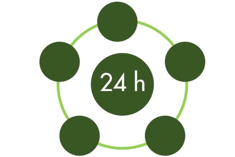 24h Zykluszeit